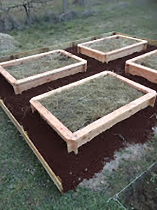 Réalisations carré potager rectangle